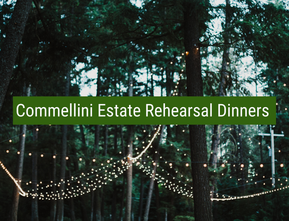 Rehearsal Dinner Venues: How to Plan!