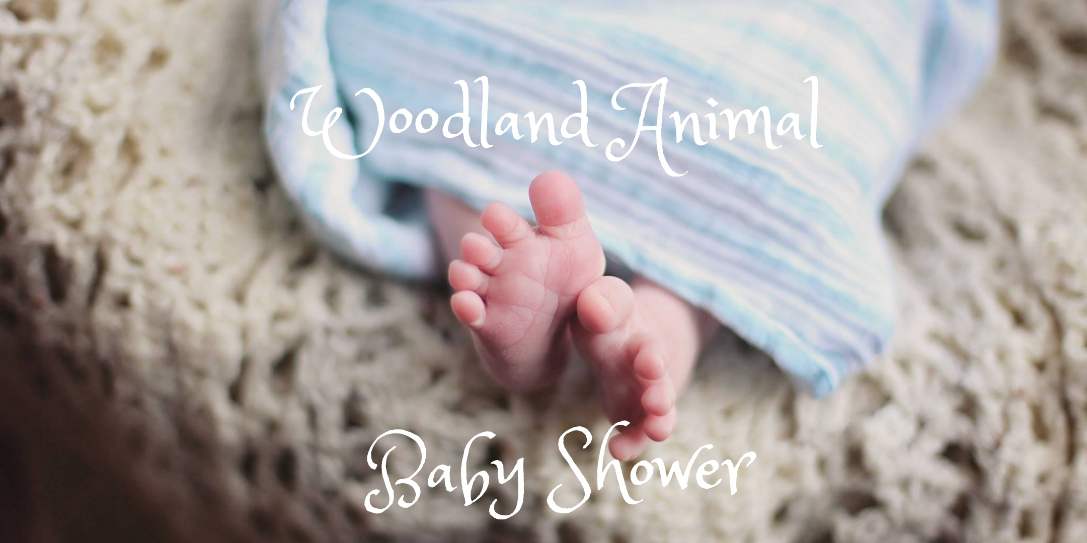 Woodland Animal Baby Shower
